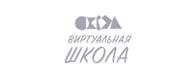 Логотип Виртуальная Школа